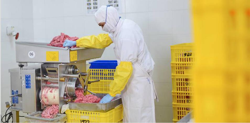 fish processing pt. permata marindo jaya
